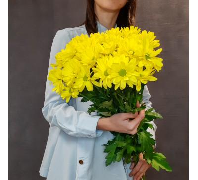 Букет желтых ромашковых хризантем