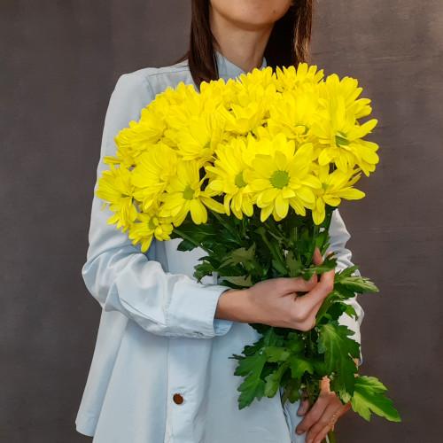 Букет желтых ромашковых хризантем от FlorPresent