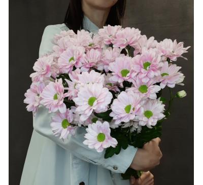 Букет розовых  ромашковых хризантем